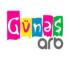 ARB Gunes